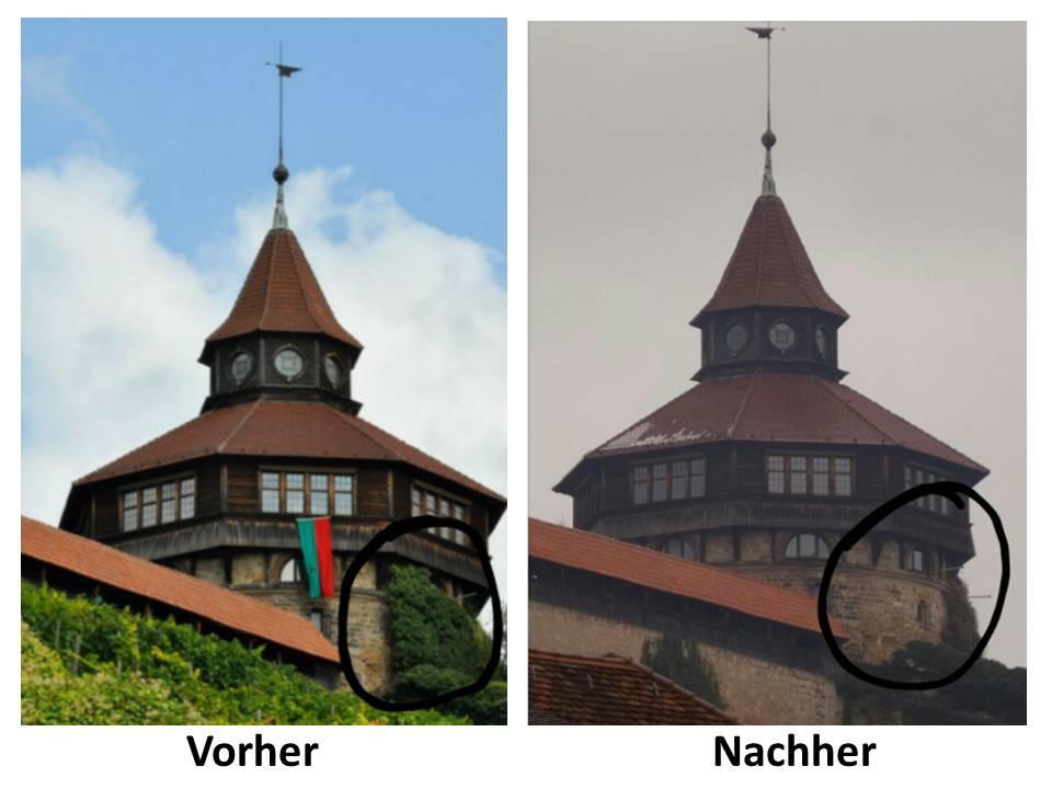 Fassadenarbeiten Entfernung Efeu Dicker Turm