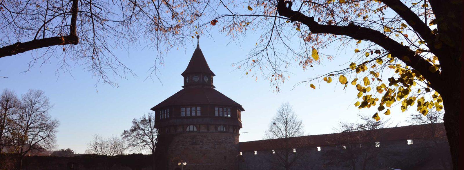 Esslinger Burg unter Bäumen